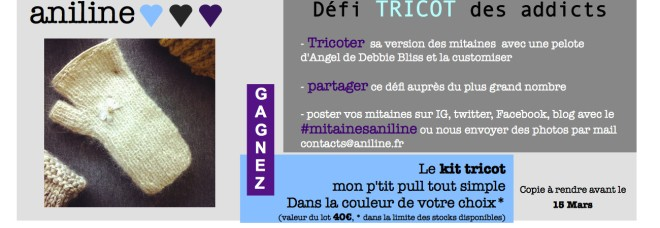https://anilineleblog.files.wordpress.com/2015/02/banniere-defi-tricot.jpeg
