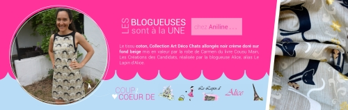 Bannière Alice-page001